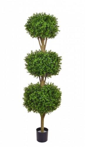 Trees & Topiary