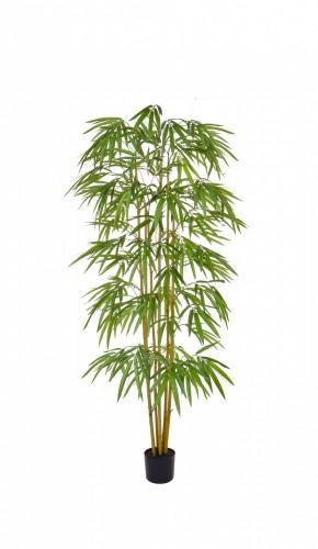 Bamboo 180 FR