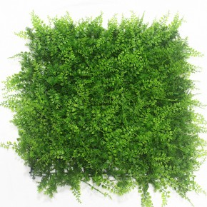 Lush Tropical Fern