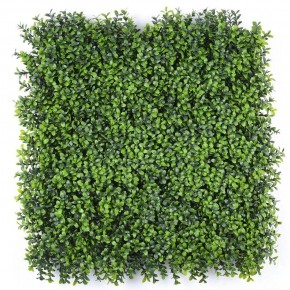 Deluxe Buxus Hedge