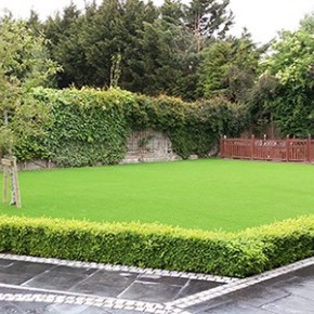 The Irish Times talk about Artificial Grass